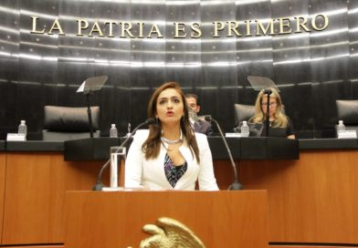 Indispensable dar pasos con mayor precisión para la protección de la vida de los periodistas y de la libertad de expresión: Iris Mendoza.