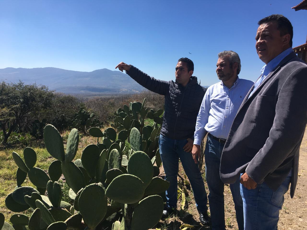 Alfredo Ramírez: Congreso debe dar certeza territorial a Jiquilpan y Sahuayo