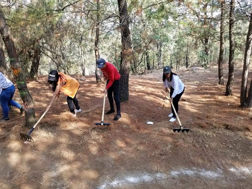 Lucila Martínez participa en jornada de limpieza y prevención de incendios forestales